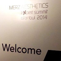 merz experts summit